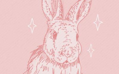 ¿Te animás a elegir la cosmética libre de crueldad animal?