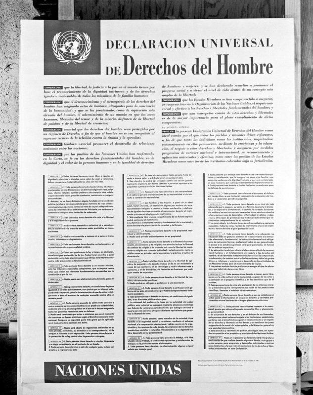 Declaración universal de los derechos del hombre (español)