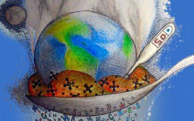 Ganadería y medio ambiente: ¿qué tiene que ver?