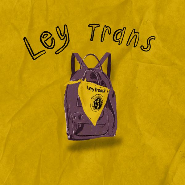 Fondo amarillo con una mochila violeta en el medio que tiene un pañuelo de ley trans